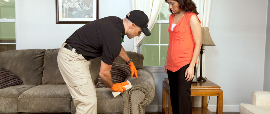 Marysville, WA carpet upholstery cleaning